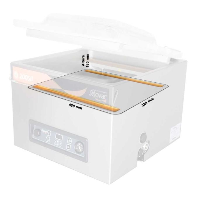 Máquina de Câmara Simples para Embalar a Vácuo 200